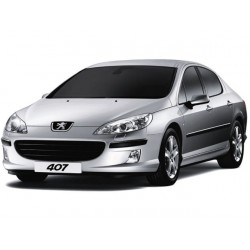Pack Full LED Peugeot 407