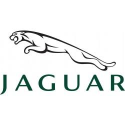 Led pour Jaguar