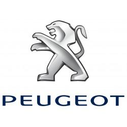 Led Pour Peugeot